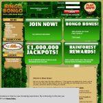 Bingo Bongo Welcome Bonus